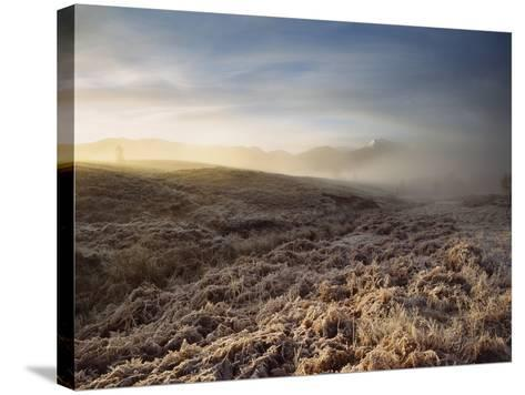 Frosted Fields and Misty Valley-Design Pics Inc-Stretched Canvas Print