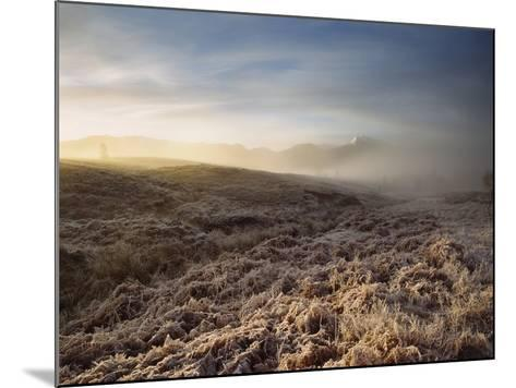 Frosted Fields and Misty Valley-Design Pics Inc-Mounted Photographic Print