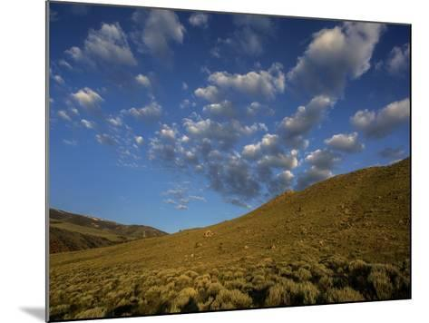 Early Morning Sunlight on a Landscape of Sagebrush with Fluffy Clouds Overhead-Jay Dickman-Mounted Photographic Print