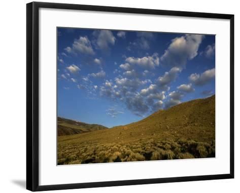 Early Morning Sunlight on a Landscape of Sagebrush with Fluffy Clouds Overhead-Jay Dickman-Framed Art Print