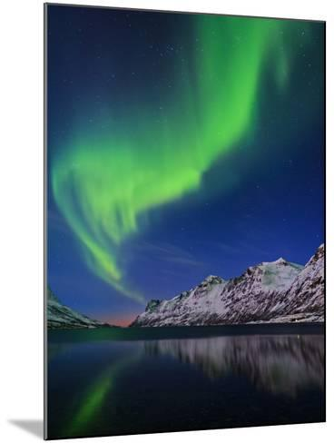 View of the Aurora Borealis, Northern Lights, Reflected in a Fjord in Norway-Babak Tafreshi-Mounted Photographic Print