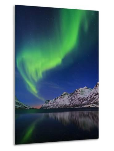 View of the Aurora Borealis, Northern Lights, Reflected in a Fjord in Norway-Babak Tafreshi-Metal Print