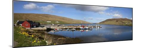 Boats in Marina; Shetland Scotland-Design Pics Inc-Mounted Photographic Print