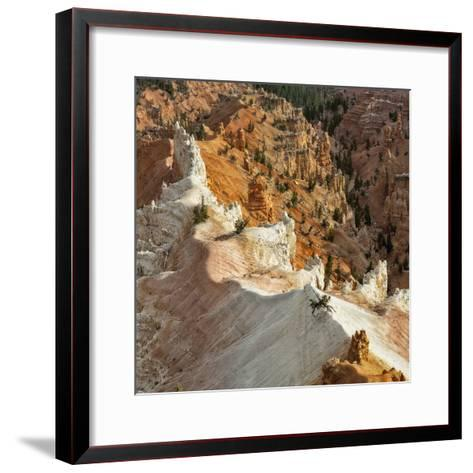 A High Angle View of Hoodoos in Cedar Breaks National Monument, a Natural Amphitheater-Babak Tafreshi-Framed Art Print