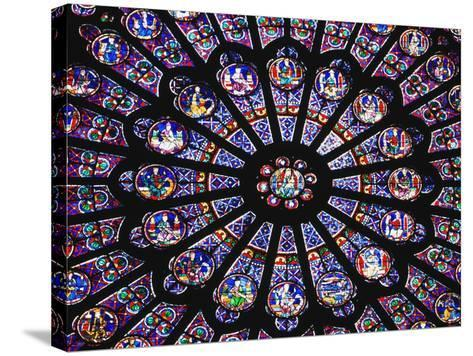Rose Window in the Notre Dame Cathedral-Design Pics Inc-Stretched Canvas Print