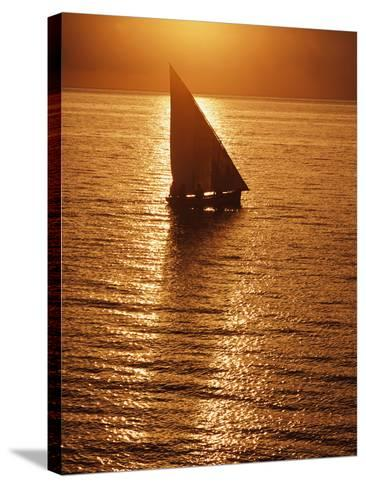 Dhow Heading Out to Sea at Dawn-Design Pics Inc-Stretched Canvas Print