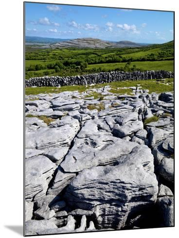 A View Towards Mullaghmore in the Burren, County Clare, Ireland-Chris Hill-Mounted Photographic Print
