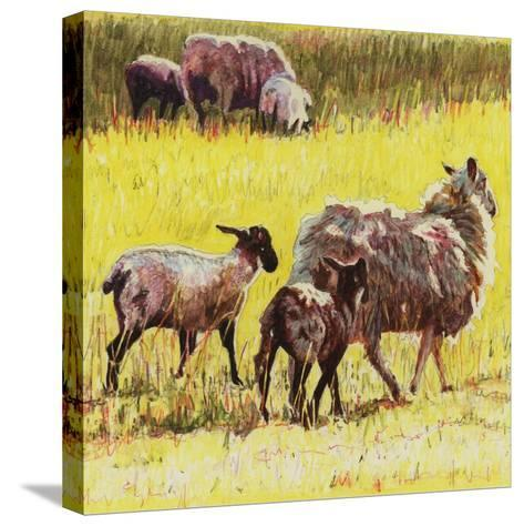 Following, 2011-Helen White-Stretched Canvas Print