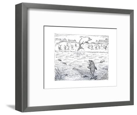 Dolphins using spring board to jump. - Cartoon-John O'brien-Framed Art Print