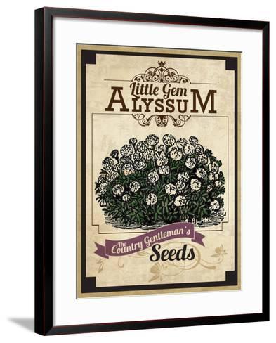 Vintage Alyssum Seed Packet--Framed Art Print