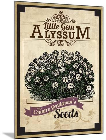 Vintage Alyssum Seed Packet--Mounted Giclee Print