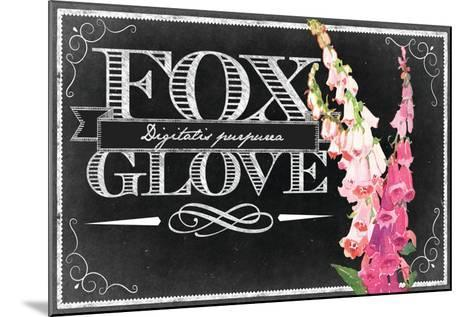 Pink Fox Gloves--Mounted Giclee Print