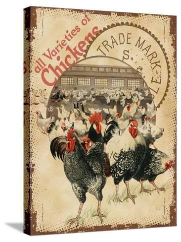 Chicken Varieties--Stretched Canvas Print
