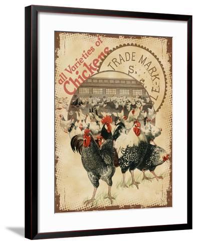 Chicken Varieties--Framed Art Print