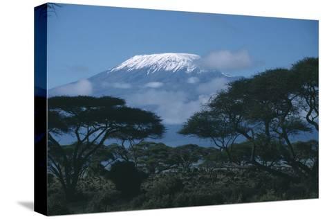 Mount Kilimanjaro-DLILLC-Stretched Canvas Print