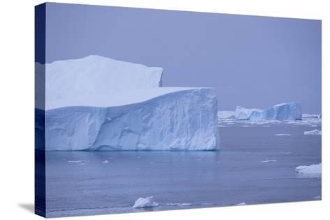 Iceberg-DLILLC-Stretched Canvas Print