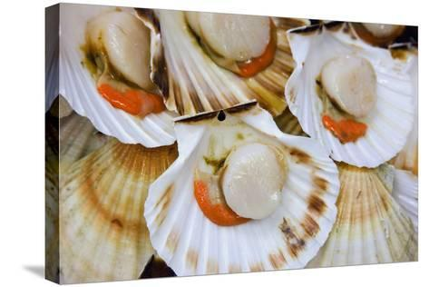 Scallops in a City Center Fish Market-Jon Hicks-Stretched Canvas Print
