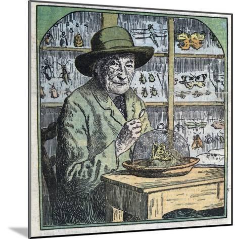 Portrait of Jean-Henri Fabre Entomologist-Stefano Bianchetti-Mounted Giclee Print