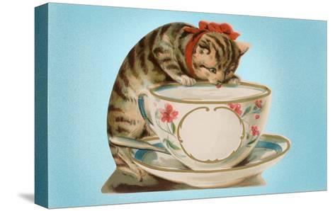 Kitten Lapping at Cup-Found Image Press-Stretched Canvas Print