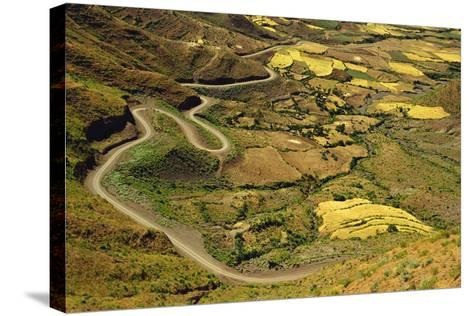 Rural Road and Yellow Landscape-Jon Hicks-Stretched Canvas Print