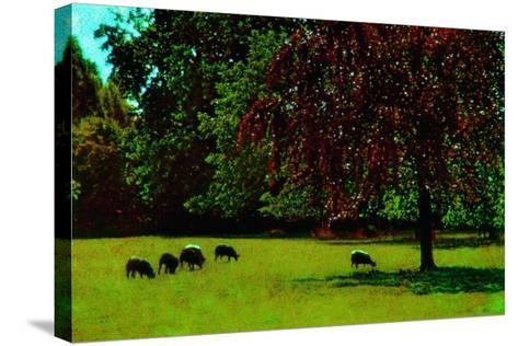 Country Side-Andr? Burian-Stretched Canvas Print