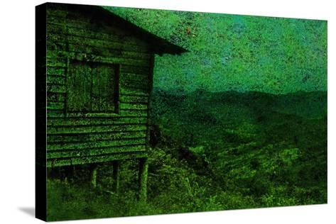 Green-Andr? Burian-Stretched Canvas Print