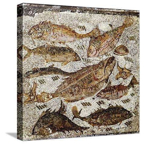 Roman Art : Fishes--Stretched Canvas Print