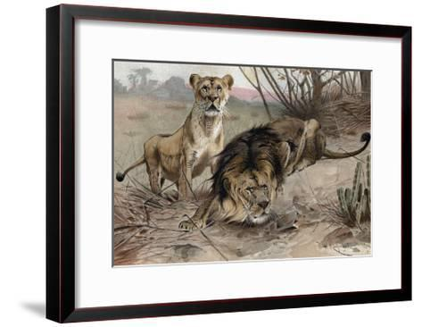 The Lion by Alfred Edmund Brehm-Stefano Bianchetti-Framed Art Print
