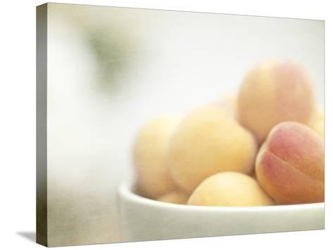 Apricots in a White Bowl Still Life-Steve Lupton-Stretched Canvas Print