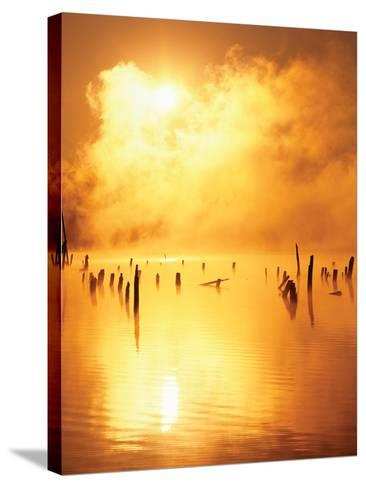 Mistified-Dennis Frates-Stretched Canvas Print