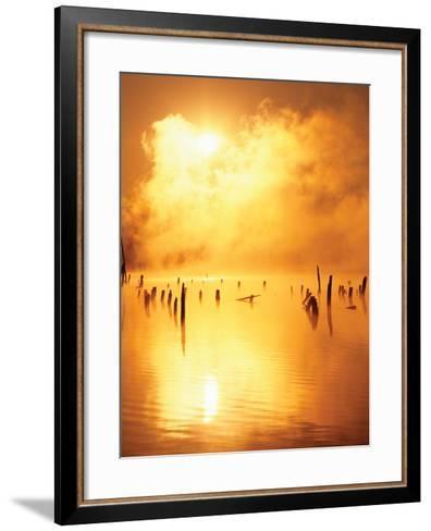 Mistified-Dennis Frates-Framed Art Print