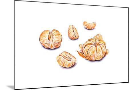 Ripe Watercolor Peeled Tangerines. Set for Design.-MargaritaSh-Mounted Art Print