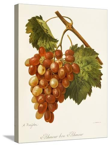 Ahmeur Bou Hameur Grape-A. Kreyder-Stretched Canvas Print