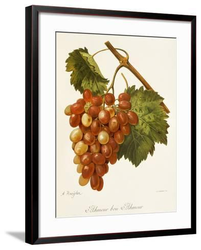 Ahmeur Bou Hameur Grape-A. Kreyder-Framed Art Print