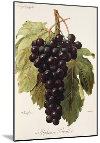 Alphonse Lavallee Grape-A. Kreyder-Mounted Giclee Print