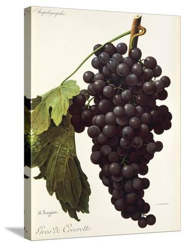 Gros De Coveretto Grape-A. Kreyder-Stretched Canvas Print