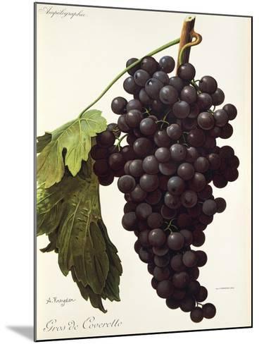 Gros De Coveretto Grape-A. Kreyder-Mounted Giclee Print