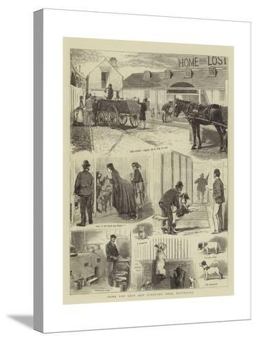 Home for Lost and Starving Dogs, Battersea-Alfred Chantrey Corbould-Stretched Canvas Print