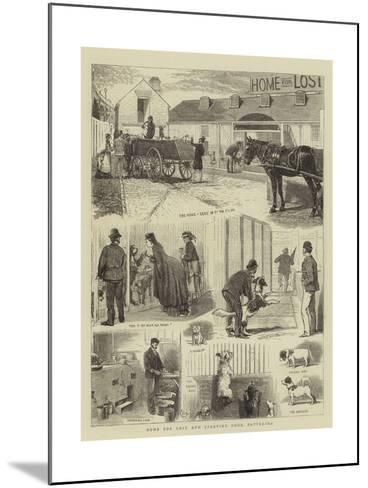 Home for Lost and Starving Dogs, Battersea-Alfred Chantrey Corbould-Mounted Giclee Print
