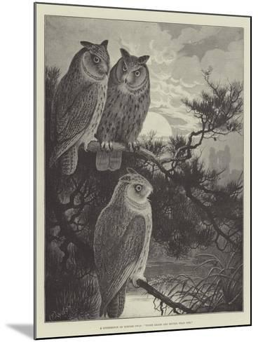 A Conference of Horned Owls, Three Heads are Better Than One-Alexander Francis Lydon-Mounted Giclee Print
