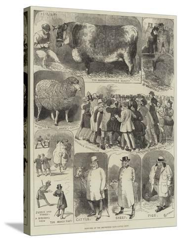 Sketches at the Smithfield Club Cattle Show-Alfred Courbould-Stretched Canvas Print
