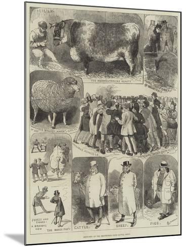 Sketches at the Smithfield Club Cattle Show-Alfred Courbould-Mounted Giclee Print