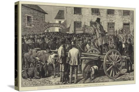 The Land League Agitation in Ireland, a Sheriff's Sale of Cattle, to Pay Rent-Aloysius O'Kelly-Stretched Canvas Print