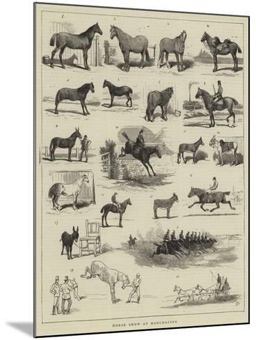 Horse Show at Manchester-Alfred Chantrey Corbould-Mounted Giclee Print