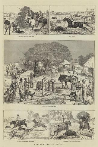 Hog-Hunting in Bengal-Alfred Chantrey Corbould-Stretched Canvas Print