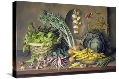 Garlic and Radishes and a Peacock Buttefly, 1997-Amelia Kleiser-Stretched Canvas Print