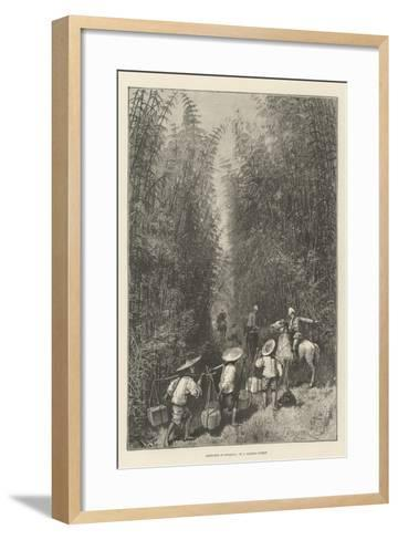 Sketches in Formosa, in a Bamboo Forest-Amedee Forestier-Framed Art Print