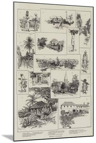 Sketches in the Bahamas-Amedee Forestier-Mounted Giclee Print