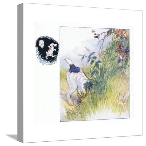 Had a Fright-Anne Anderson-Stretched Canvas Print