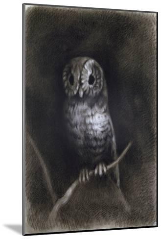 Owl-Andrea Mantegna-Mounted Giclee Print
